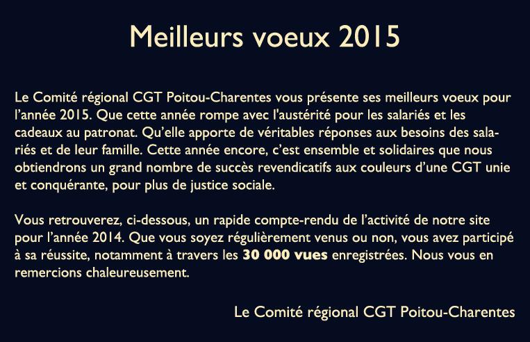 infographie-rétrospective-2014-1e copy copy